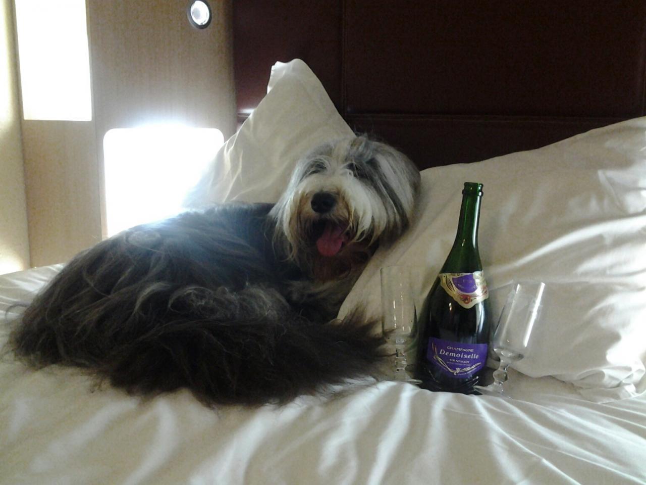 Champagne après la victoire!