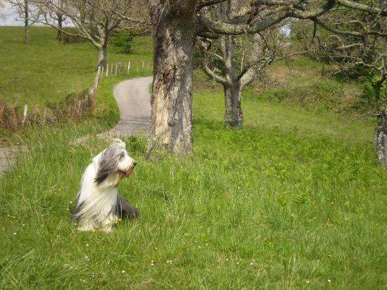 Vacances au Pays Basque