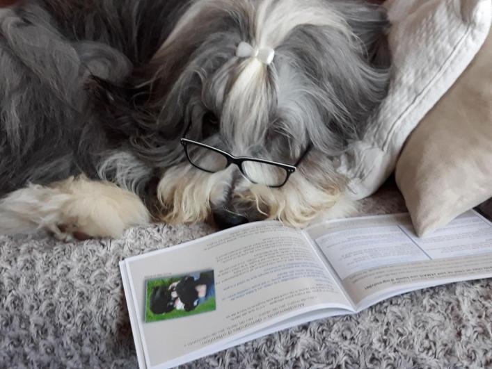 Alwyn étudie le livret d'éducation