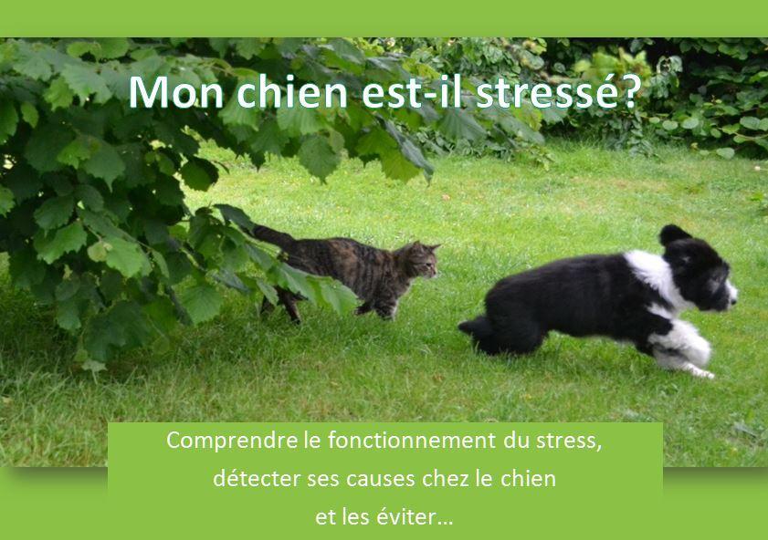 Couverture livret stress