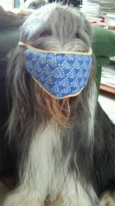 Meggie masque
