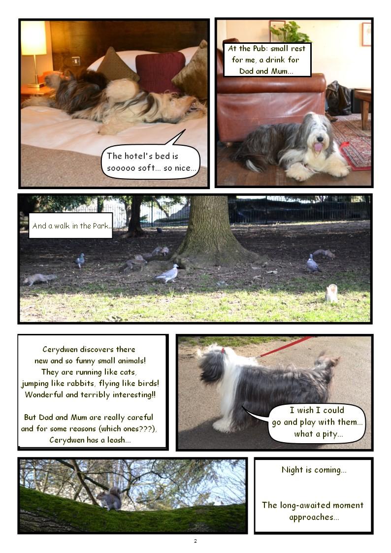 Page 2 en anglais